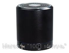Портативная FM MP3 колонка T-2020