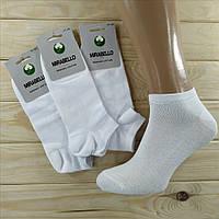 Носки демисезонные мужские  MIRABELLO Турция organik cotton 41-44р белые НМД-0510133