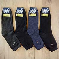 Зимние мужские носки с махрой внутри  Житомир Украина 29-31р ассорти  НМЗ-04295