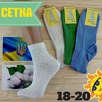 Носки  детские с сеткой Житомир 18-20р ассорти  НДЛ-09178