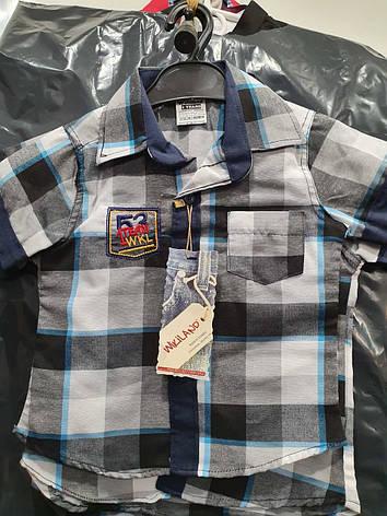 Акция!!! Детская рубашка Wikiland (1-4), фото 2