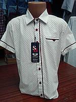 Рубашка турецкая подростковая белая в красную точку