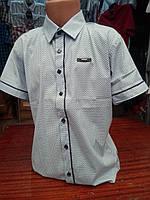 Рубашка белая с синим на мальчика