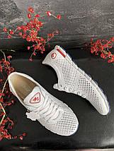 Женские кроссовки кожаные летние белые Milord Olimp-п, фото 2