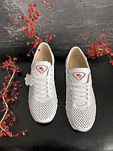 Женские кроссовки кожаные летние белые Milord Olimp-п, фото 3
