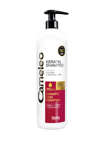 Купить Шампунь для волос Delia Cosmetics Cameleo Защита цвета для окрашенных волос 500 мл