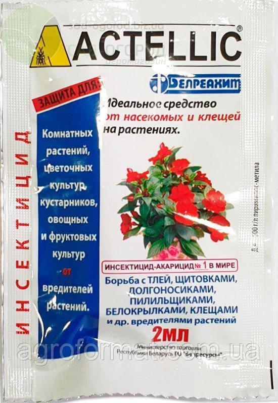 Актеллик 2 мл (инсектицид для комнатных растений)