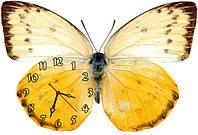 Бабочка - часы настенные фигурные 30*45 см 6