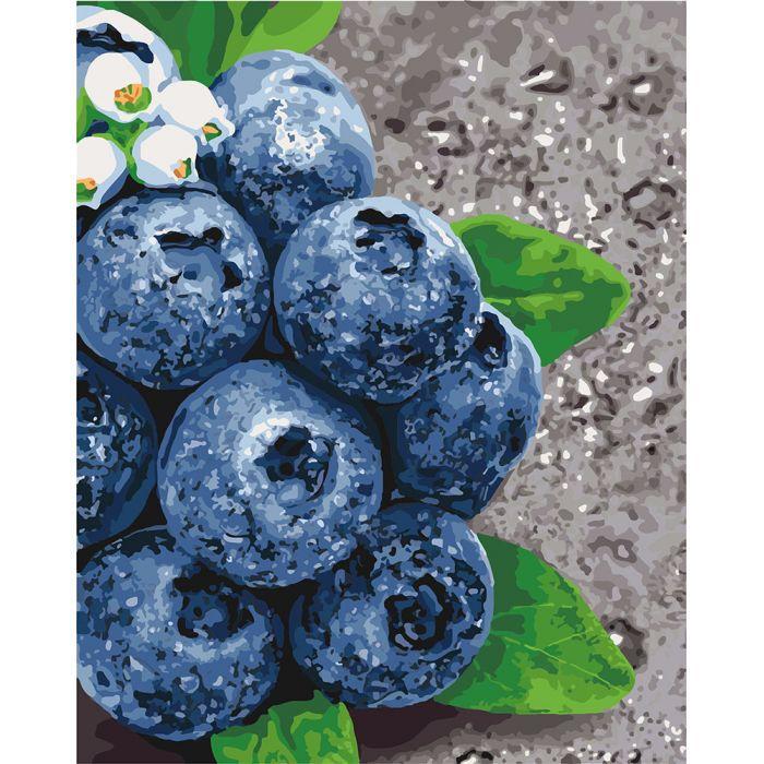 Картина по номерам Сочные плоды ТМ Идейка 40 х 50 см  КНО5581