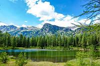 Обои-картина украшение стены/ Фото обои на стену Горы, лес, озеро/Печать на холсте 60*90