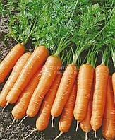 Морковь Ласуня (2 г)