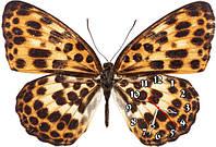 Бабочка - часы настенные фигурные 30*45 см 12