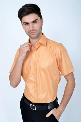 Рубашка 113RPass0010 цвет Светло-персиковый, фото 2