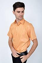 Рубашка 113RPass0010 цвет Светло-персиковый, фото 3