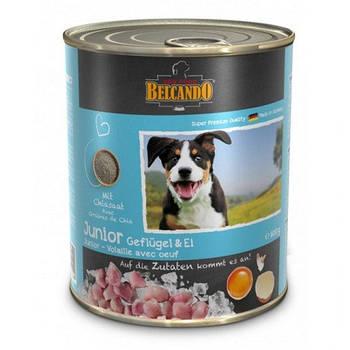 Консерва BELCANDO (Белькандо) для юниоров птица с яйцом, 0,8 кг