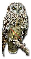Оригинальные 3D часы на стену фигурные Erpol Сова на ветке 30x60 см