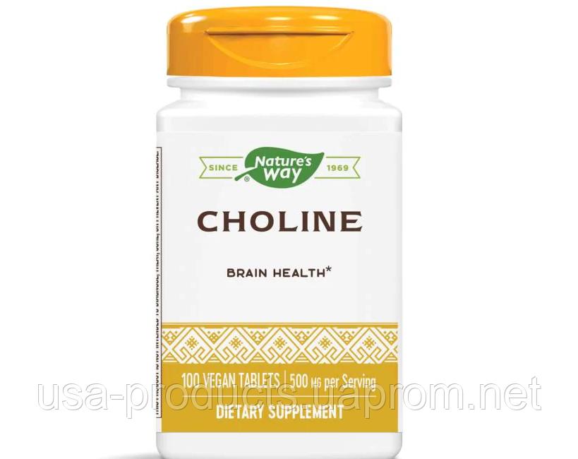 Холин 500 мг 100 таблеток США