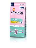 Advance (Эдванс) Сухой корм для котят Kitten 15кг