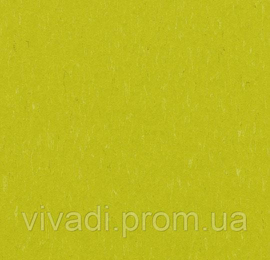 Marmoleum Solid-young grass
