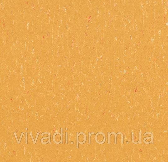 Marmoleum Solid-mellow yellow