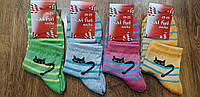 """Женские стрейчевые носки(сетка)""""Kai fui"""" 23-25(36-40) Котики, фото 1"""