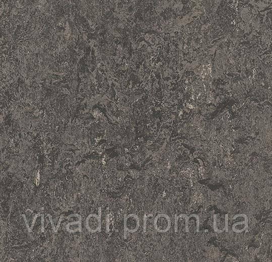 Токорассеївальний Мармолеум-graphite