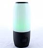 Портативная колонка с цветной подсветкой SPS JBL Q690 Pulse, фото 2