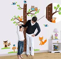 """Интерьерная декоративная наклейка на стену в детскую """"Ростомер Лесные Звери AY221AB"""""""