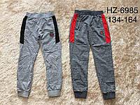 Трикотажные спортивные брюки для мальчиков Active Sports 134-164р.р., фото 1