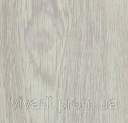 Allura Dryback-white giant oak
