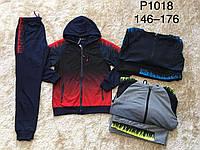 Спортивный костюм 2 в 1 для мальчика оптом, Glassbear, 146-176 см,  № Р1018