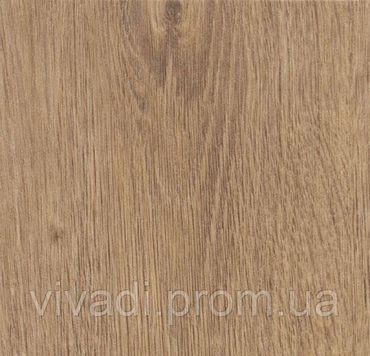 Allura Dryback- light rustic oak