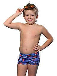 Плавки для мальчика Fish teeny , р. 140-164