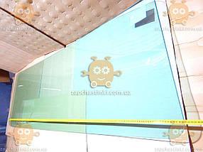 Стекло лобовое МАЗ СУПЕР чистое (пр-во SAFE GLASS Украина) ГС 46805 (предоплата 300 грн), фото 3