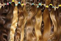 Славянские волосы не окрашенные 55 см