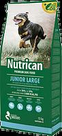 Nutrican Junior Large (Нутрикан Джуниор Лардж) сухой корм для щенков крупных пород