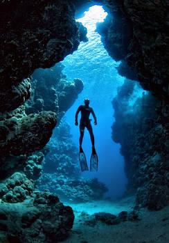 Плавание и дайвинг