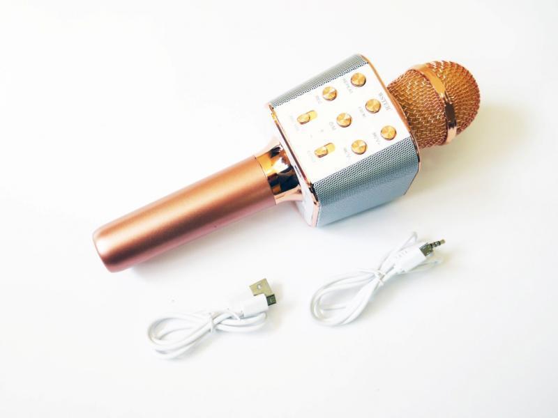 Микрофон Wster WS-1688