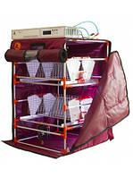 Інкубатор Zoom Straus 12 автомат.(12V) з зволожувачем і лотками перевороту Straus 6, фото 1