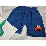 Костюм летний для мальчика The Cookie 3 цвета Размер: 80-110 см, фото 9