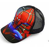 Кепка Spider сетка 2 цветов Размер:50-54 см, фото 2