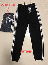 Спортивные мужские штаны 2XL 3XL 4XL Микс