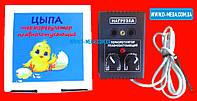 Терморегулятор для инкубатора ЦЫПА (с двумя регулировками), фото 1
