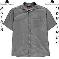 Рубашка больших размеров 2XL - 6XL мужская Pierre Cardin из Англии - на короткий рукав