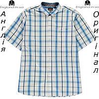 Рубашка в клетку  больших размеров 2XL - 6XL мужская Pierre Cardin из Англии - на короткий рукав