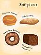 Моя перша енциклопедія : Як роблять хліб? (у), фото 2
