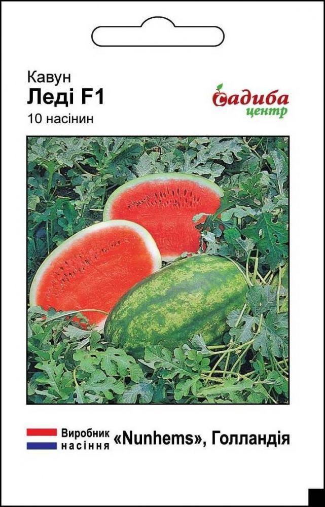 Семена арбуза Леди F1 10 шт, Nunhems