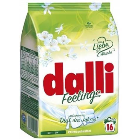 Стиральный порошок Dalli для светлого и белого белья 1,04 kg, фото 2