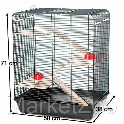 """Клетка Interzoo """"Remy"""" для крыс,хомяков,дегу или шиншилл.с комплектацией Размер: 580*380*710 мм., фото 2"""