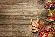 Золотая сень, листья